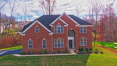 Mount Olive Twp. NJ Rental For Rent: $4,500