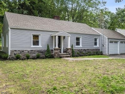 Mendham Boro NJ Single Family Home For Sale: $549,900