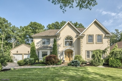 Clark Twp. Single Family Home For Sale: 115 Hillcrest Dr