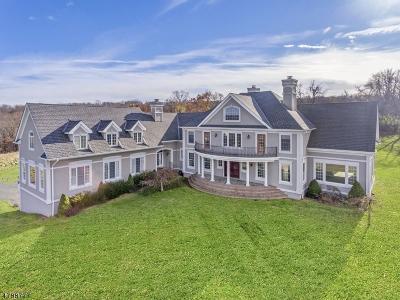 Holland Twp. Single Family Home For Sale: 423 Milford-Warren Glen