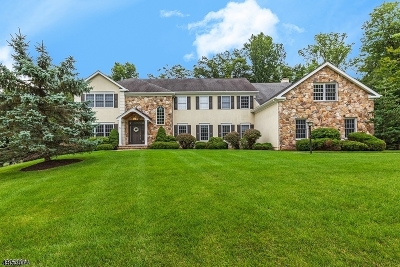 Mendham Twp. NJ Single Family Home For Sale: $1,249,000