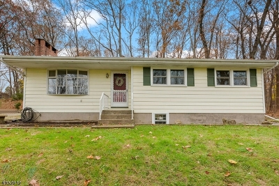 Bethlehem Twp. Single Family Home For Sale: 245 County Road 579
