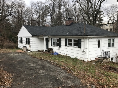 Morristown Town Single Family Home For Sale: 28 Headley Rd