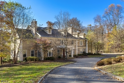 Bernards Twp., Bernardsville Boro Single Family Home For Sale: 304 Mt Harmony Rd