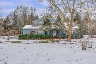 Bernards Twp., Bernardsville Boro Single Family Home For Sale: 58 Atlas Road