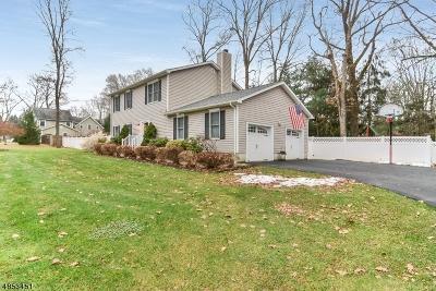 Mendham Boro NJ Single Family Home For Sale: $649,900