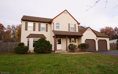 Piscataway Twp. Single Family Home For Sale: 193 Brewster Ave
