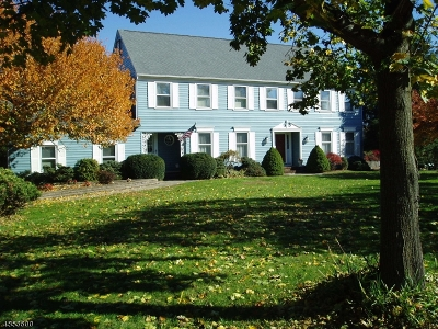Montgomery Twp. Single Family Home For Sale: 30 Grist Mill Dr