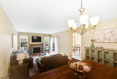 Hillsborough Twp. Condo/Townhouse For Sale: 35 Manor Dr