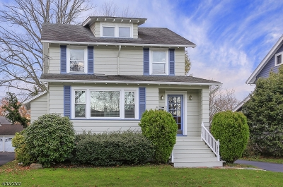 Westfield Town NJ Single Family Home For Sale: $525,000