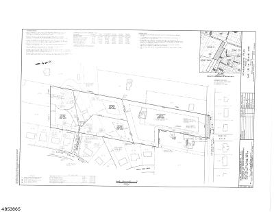 Hillsborough Twp. Single Family Home For Sale: 50 Hamilton Rd