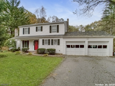 Roxbury Twp. Single Family Home For Sale: 269 Berkshire Valley Rd