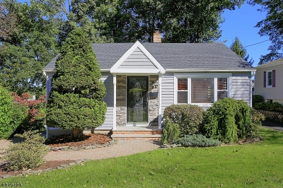 Dover Town Single Family Home For Sale: 10 5th St