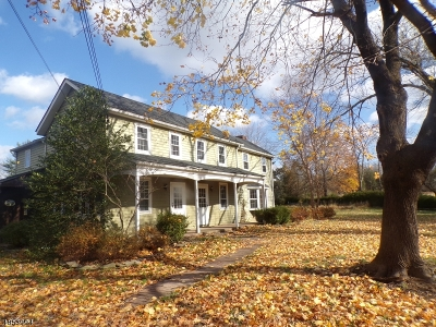 Alexandria Twp., Frenchtown Boro Single Family Home For Sale: 215 County Rd 513