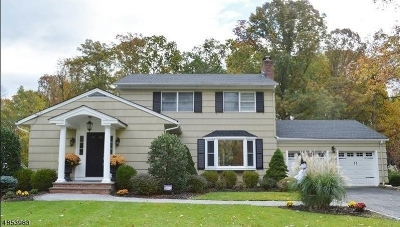 Florham Park Boro Single Family Home Active Under Contract: 30 Lincoln Ave