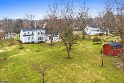 Basking Ridge Single Family Home For Sale: 371 Mt Airy Rd