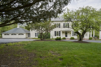 Flemington Boro, Raritan Twp. Single Family Home For Sale: 1 W View Dr