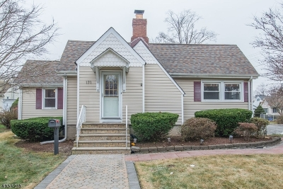 Parsippany Single Family Home For Sale: 171 River Dr