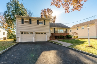 Cranford Twp. Single Family Home For Sale: 222 Denman Rd