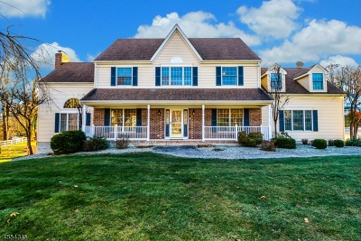 Hunterdon County Single Family Home For Sale: 1 Yard Ct