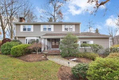 Franklin Lakes Boro Single Family Home For Sale: 221 Wayfair Cir