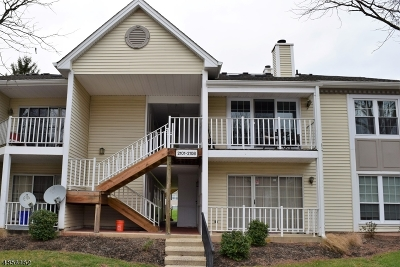 Bridgewater Twp. Single Family Home For Sale: 2106 Doolittle Dr