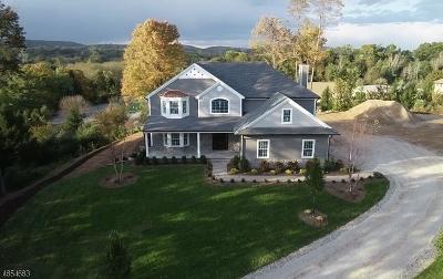 Montville Twp. Single Family Home For Sale: 38 Hillcrest Ave