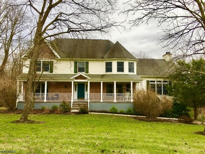 Clinton Twp. Single Family Home For Sale: 19 Austin Hill Rd