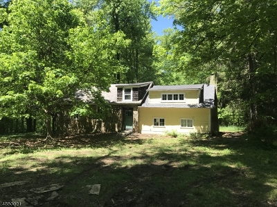 Mendham Boro, Mendham Twp. Single Family Home For Sale: 239 Mountainside Rd