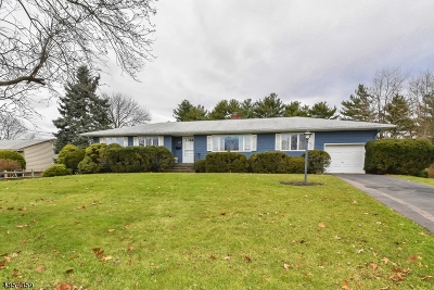 Scotch Plains Twp. Single Family Home For Sale: 2279 Old Farm Rd