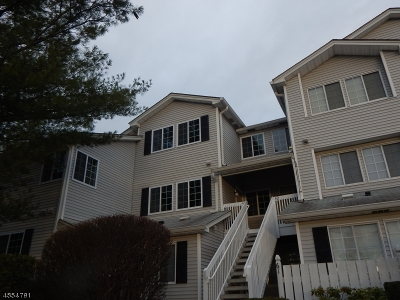 Bedminster Twp. Condo/Townhouse For Sale: 64 Cheswich Ct