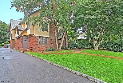 Somerville Boro Multi Family Home For Sale: 126-128 Mountain Ave