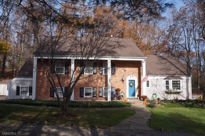 Parsippany-Troy Hills Twp. Single Family Home For Sale: 37 Long Ridge Rd