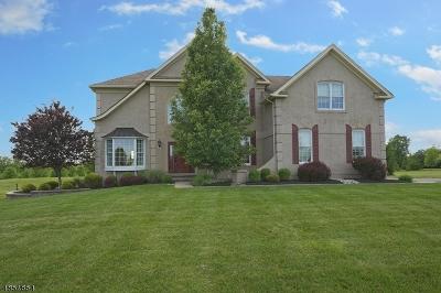 Alexandria Twp. Single Family Home For Sale: 58 Balmoral Dr