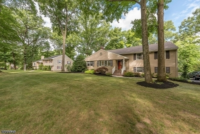 Scotch Plains Twp. Single Family Home For Sale: 2081 Brookside Dr