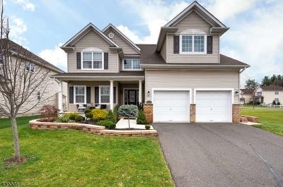 Franklin Twp. Single Family Home For Sale: 110 Willocks Cir