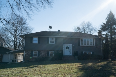 Flemington Boro, Raritan Twp. Single Family Home For Sale: 12 Bennie Road