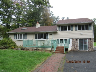 Mount Olive Twp. Single Family Home For Sale: 384 Drakestown Rd