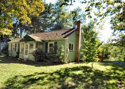 Single Family Home For Sale: 18 Route 46