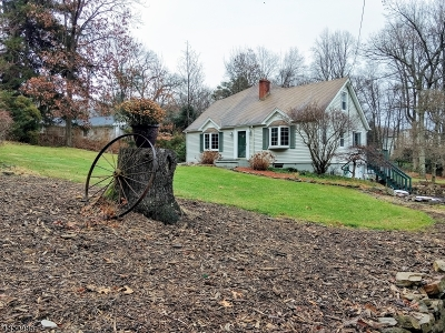 Rockaway Twp. Single Family Home For Sale: 36 Sunny Hill Rd