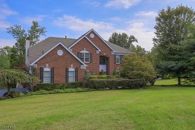 Bernards Twp., Bernardsville Boro Single Family Home For Sale: 6 Caldwell Ct
