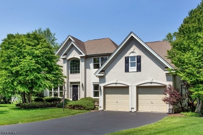 Montgomery Twp. Single Family Home For Sale: 7 Tanglewood Ct