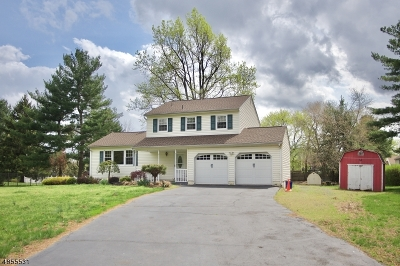 Hillsborough Twp. Single Family Home For Sale: 4 Woodmere Dr