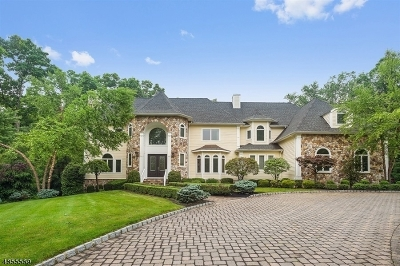 Bernards Twp., Bernardsville Boro Single Family Home For Sale: 40 Canoe Brook Ln