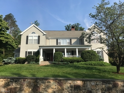 Bernardsville Boro Single Family Home For Sale: 12 Hillside Ave