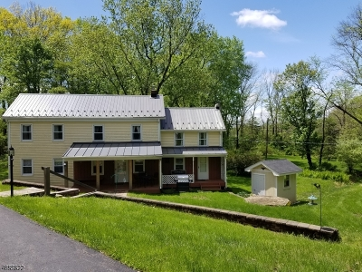 Alexandria Twp. Single Family Home For Sale: 553 Woolf Rd