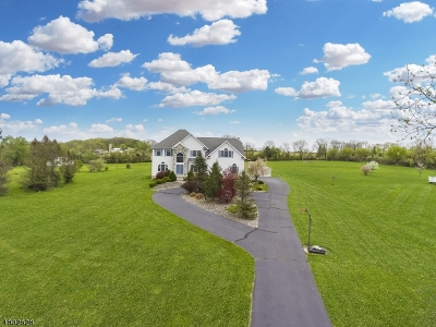 Alexandria Twp., Frenchtown Boro Single Family Home For Sale: 7 Maple Springs Rd