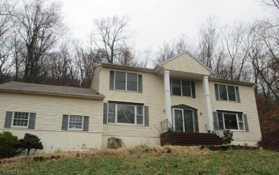 Roxbury Twp. Single Family Home For Sale: 204 Emmans Rd