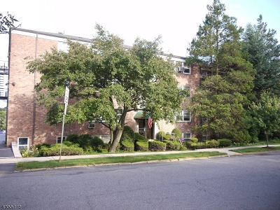 Nutley Twp. NJ Condo/Townhouse For Sale: $119,000