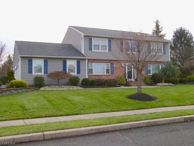 Franklin Twp. Single Family Home For Sale: 6 Pucillo Ln